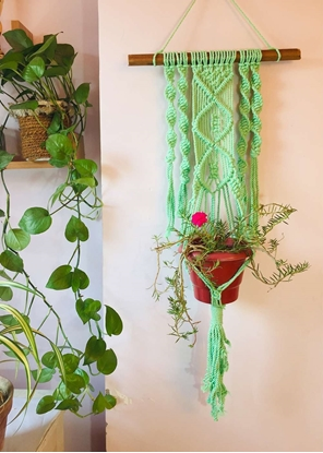 Homelymess Mint Cool Macrame Planter